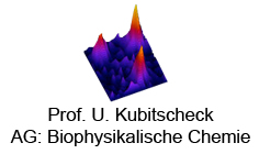 The Biophysical Chemistry Workgroup
